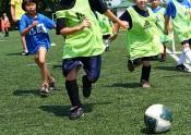 soccer-success-stevendepolo